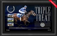 Winx Triple Treat - Dual Signed Whip and Horseshoe Display