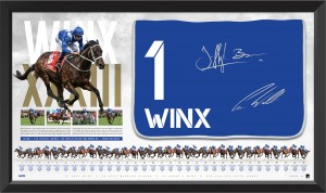Winx Dual Signed Saddle Cloth Display